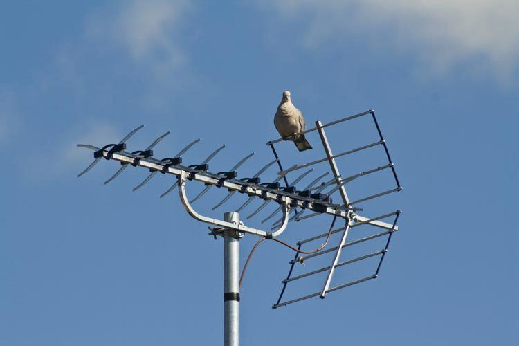 3-Long-Range-TV-Antennas